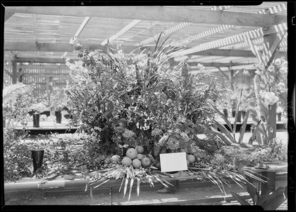 Flower and tropical fruit display, Southern California, 1928