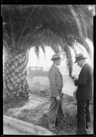 South Vermont Avenue knoll, Southern California, 1928