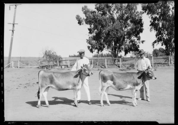 La Lomita Rancho, Southern California, 1925