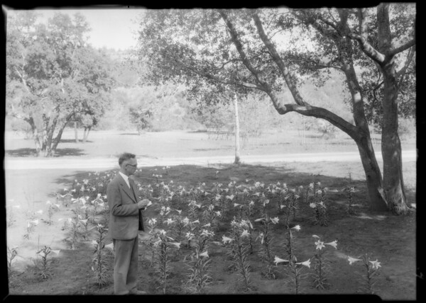 Planting Easter Lillies, Southern California, 1928