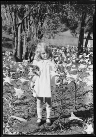 Rabbit for Easter, Southern California, 1928