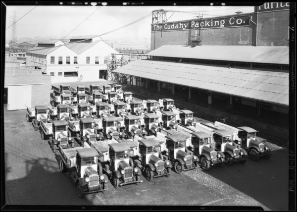 Fleet of cars and exterior of Cudahy Packing Co. buildings, Southern California, 1929