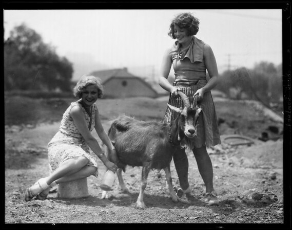 Animal shots for publicity, Dorothy Day, Southern California, 1929