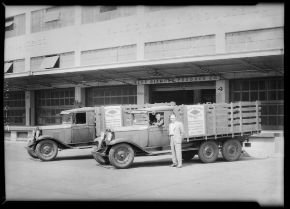 Blue Diamond Produce Co. trucks, Southern California, 1929