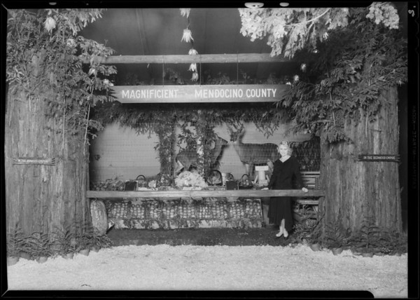 Mendocino County booth, Land Show, Southern California, 1930