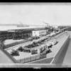 Regan plant (retouched), Southern California, 1929
