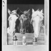 Composite horses & 3 lubricators, Southern California, 1929