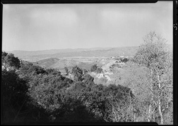 Tree scenes etc. around tract, Southern California, 1930
