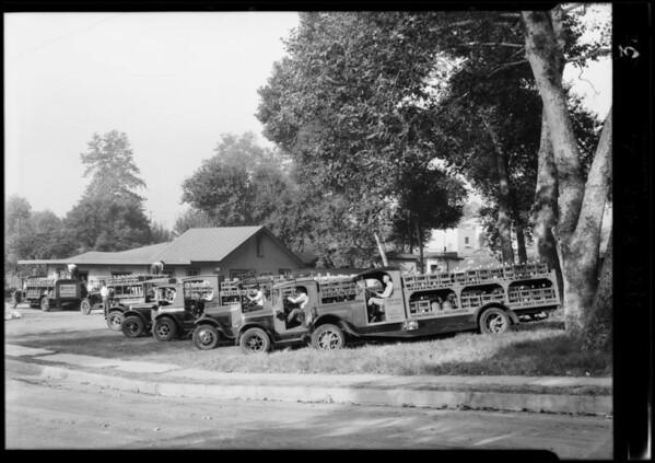 Fleet of trucks and interior shot of plant, Southern California, 1929