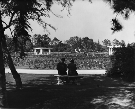 Couple sitting in the Rose Garden
