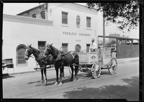 Lineup of trucks at Peerless Creamery, Southern California, 1929