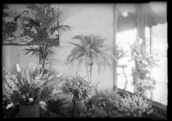 Flower shop at 5508 Hollywood Boulevard, Los Angeles, CA, 1929