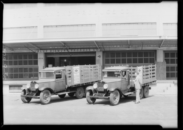 Blue Diamond Produce Co. trucks, Southern California, 1929