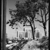 County Hospital looking northeast through trees, exterior, long shot, Los Angeles, CA, 1931
