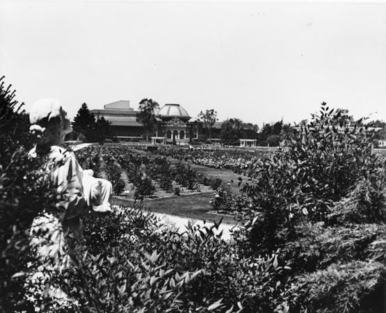 Rose Garden at Exposition Park