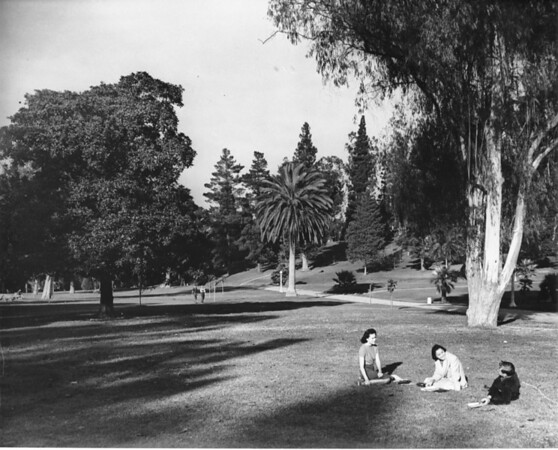 Women sitting at a city park in Los Angeles County