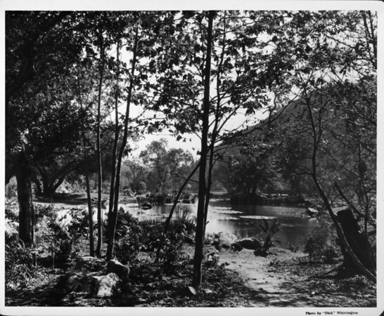 Streams, fish ponds, private gardens in 1948