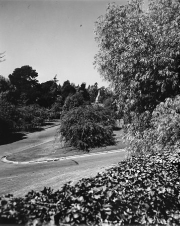 Landscape of Forest Lawn Memorial Park with a building in the far background
