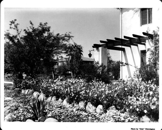 Residential area landscape of 1948
