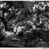 Landscape, rock garden and steps, private gardens of 1948