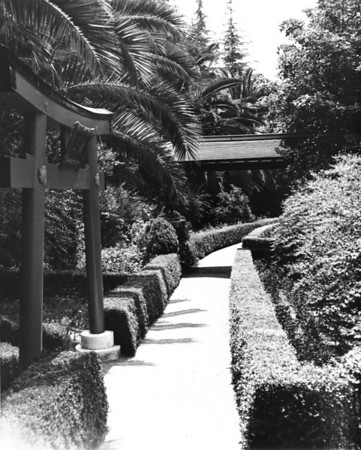 A walkway through the Japanese gardens in Hollywood