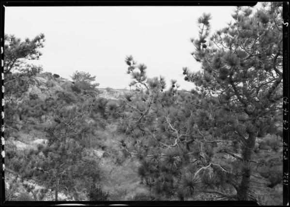 Scenics, Southern California, 1926