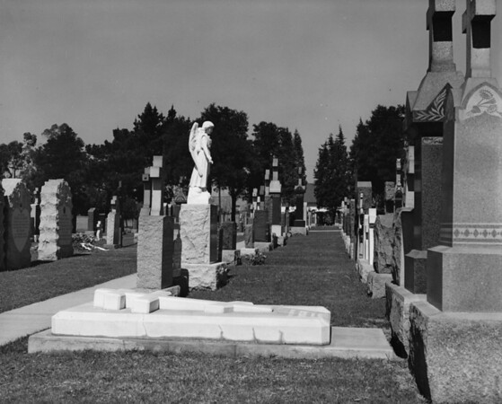 Looking down a row of headstones