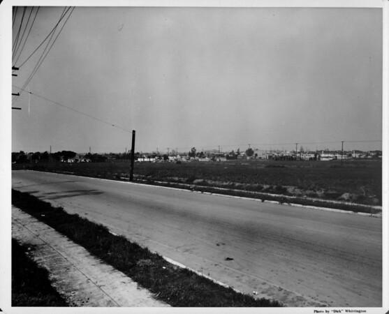 Roadside near undeveloped land