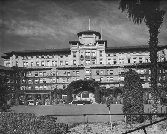 Facade of the Huntington Hotel cropped between a palm tree and shrubbery