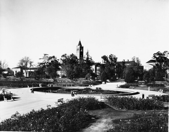 Rose Garden with University of Southern California (USC) in background