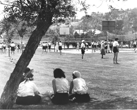 Women's volleyball is certainly a hit here in Los Angeles, as a group of women play the sport on a field near the base of the Hollywood Hills