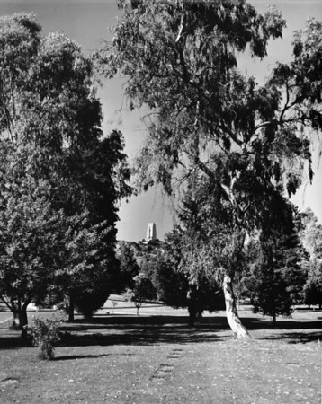 Landscape at Forest Lawn Memorial Park along with a building in the background