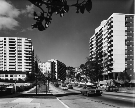 Tall residential buildings along Wilshire Boulevard in West Los Angeles