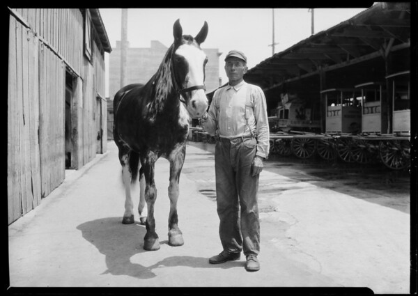 Men at Los Angeles Creamery stables, Southern California, 1926