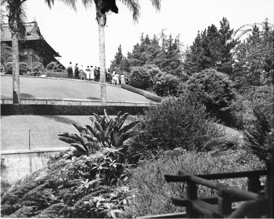 The Japanese gardens in Hollywood