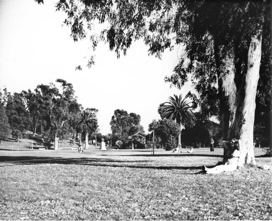 Scene at a city park in Los Angeles County