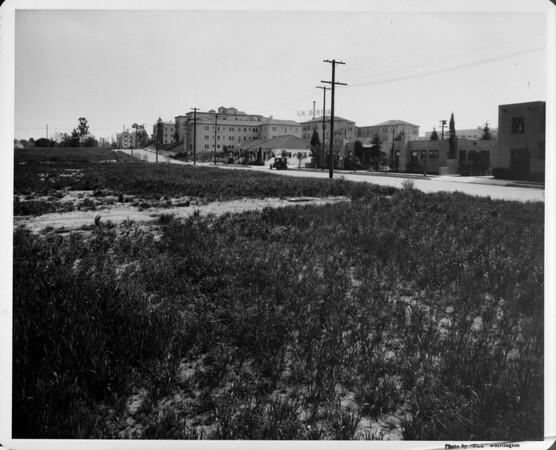 Undeveloped land adjacent to the LA Bertha Apartments