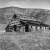 """Old delapidated barn with sign reading: """"Dr. Pierce's Pleasant Pellets"""""""