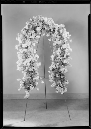 Horseshoe of flowers, Southern California, 1930