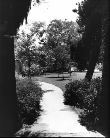 A narrow path winding its way through a park
