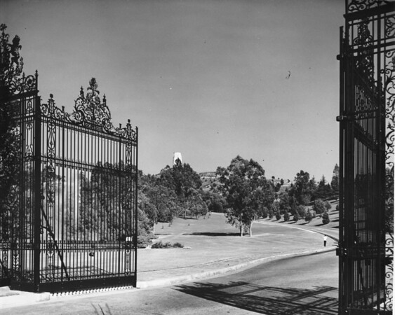 Entrance to Forest Lawn Memorial Park through wrought-iron gates surrounded by landscape