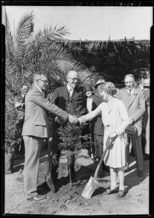 Mary Pickford planting first tree in the garden of fame, California Botanical Garden, Southern California, 1928