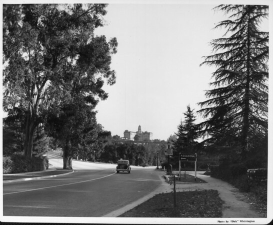 A road leading to Pasadena with tall trees to each side of it as the Vista Del Arroyo Hotel stands tall in the background