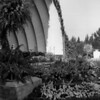 The Hollywood Bowl stage surrounded by flowers and shrubbery