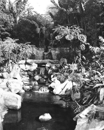 Photo of small waterfall and many plants and trees in a city park