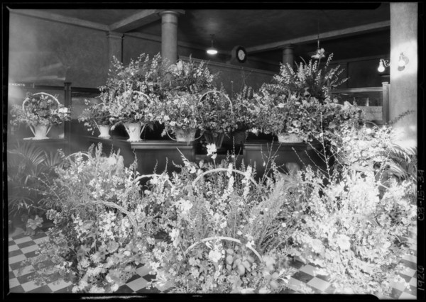 Flowers at West 6th Street & South Western Avenue opening, Pacific-Southwest Trust & Savings Bank, Los Angeles, CA 1926
