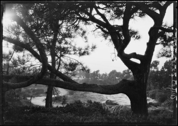Scenics at Del Mar, CA, 1926