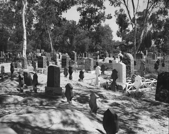 Rows of headstones in the cemetery