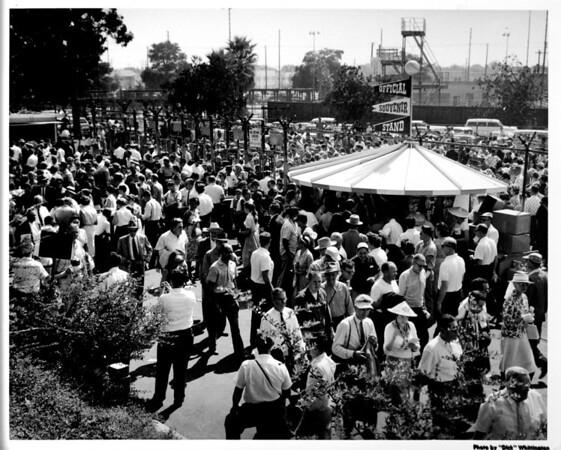 Coliseum crowds