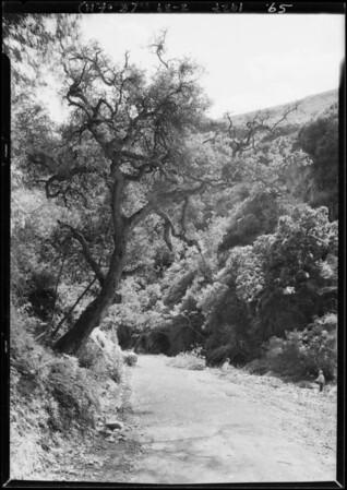 Miramar Estates, Southern California, 1927